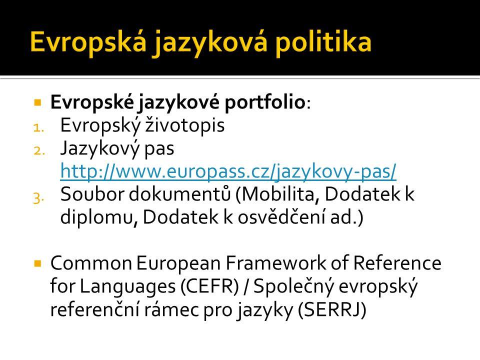 Evropská jazyková politika