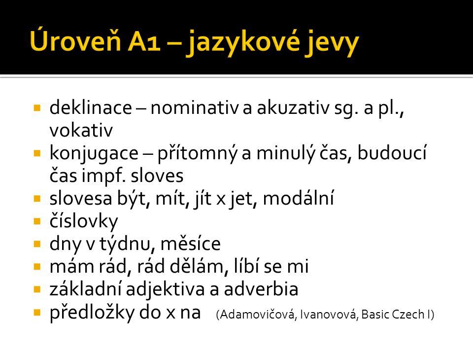 Úroveň A1 – jazykové jevy