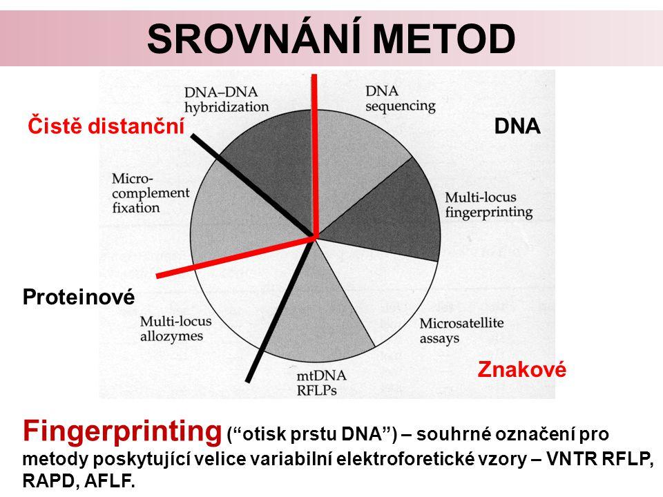 Srovnání metod Čistě distanční. DNA. Proteinové. Znakové.