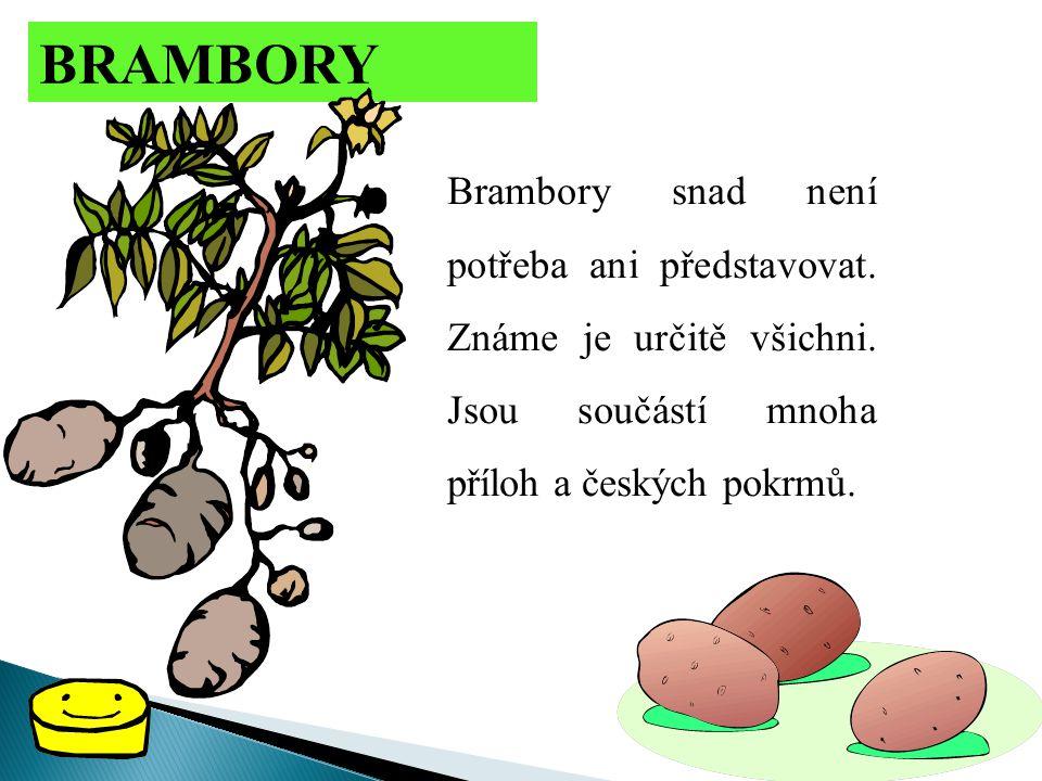 BRAMBORY Brambory snad není potřeba ani představovat.