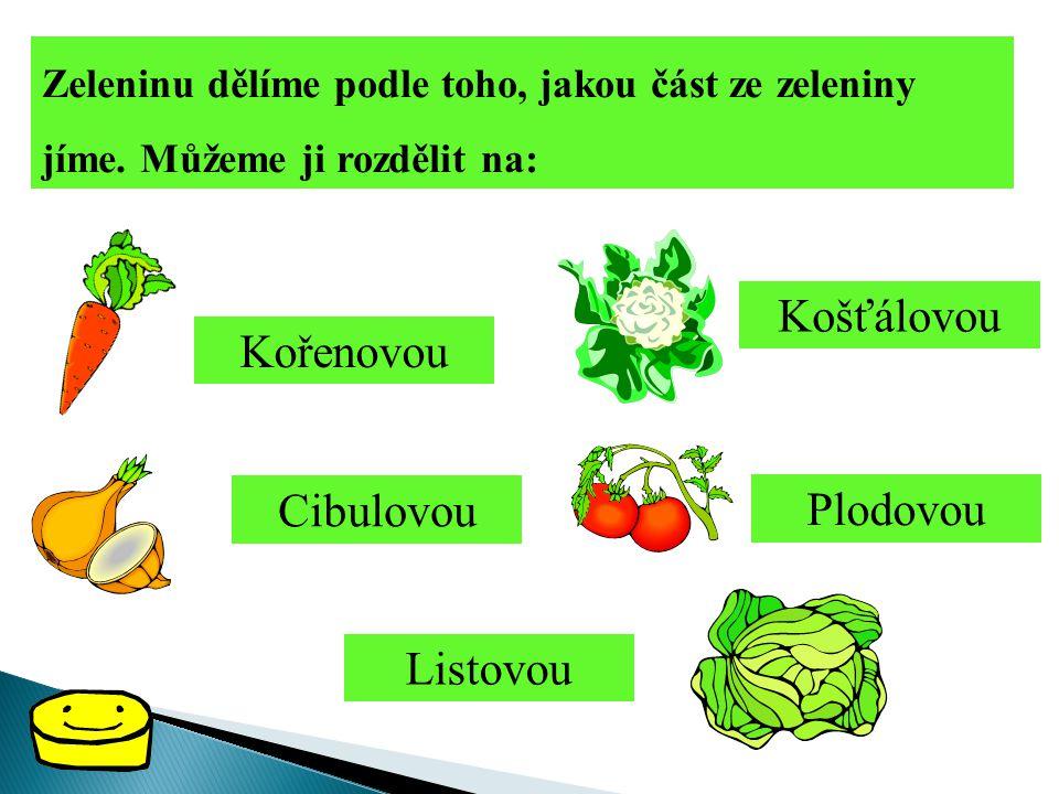 Košťálovou Kořenovou Cibulovou Plodovou Listovou