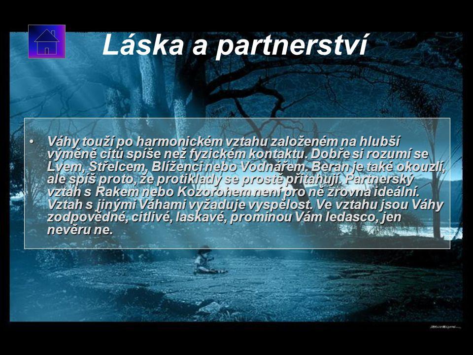 Láska a partnerství