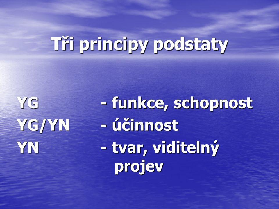 Tři principy podstaty YG - funkce, schopnost YG/YN - účinnost YN - tvar, viditelný projev