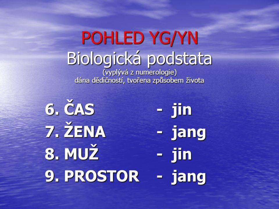 POHLED YG/YN Biologická podstata (vyplývá z numerologie) dána dědičností, tvořena způsobem života