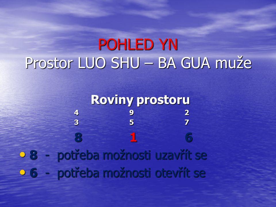 POHLED YN Prostor LUO SHU – BA GUA muže