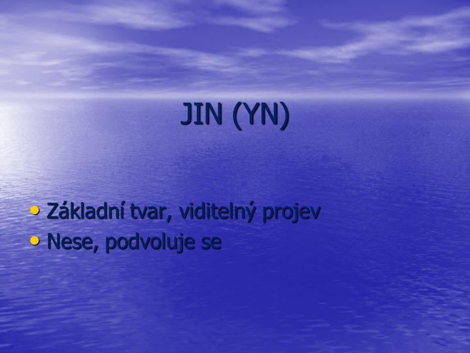 JIN (YN) Základní tvar, viditelný projev Nese, podvoluje se