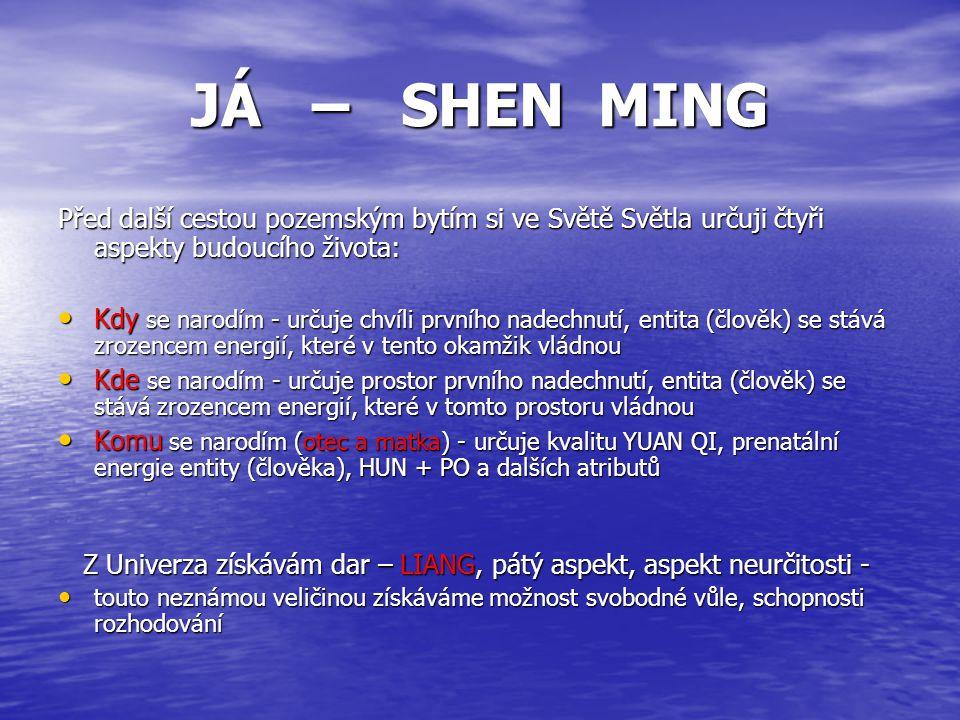 JÁ – SHEN MING Před další cestou pozemským bytím si ve Světě Světla určuji čtyři aspekty budoucího života: