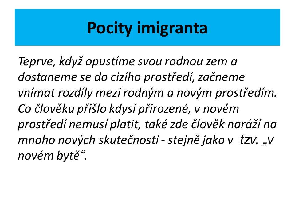 Pocity imigranta