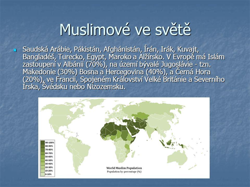 Muslimové ve světě