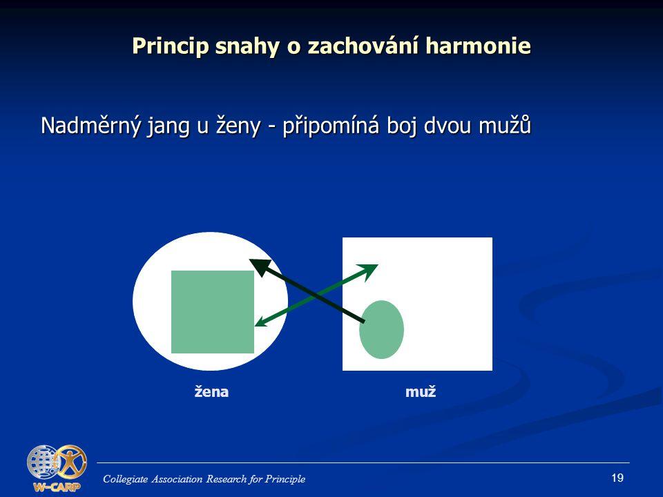 Princip snahy o zachování harmonie