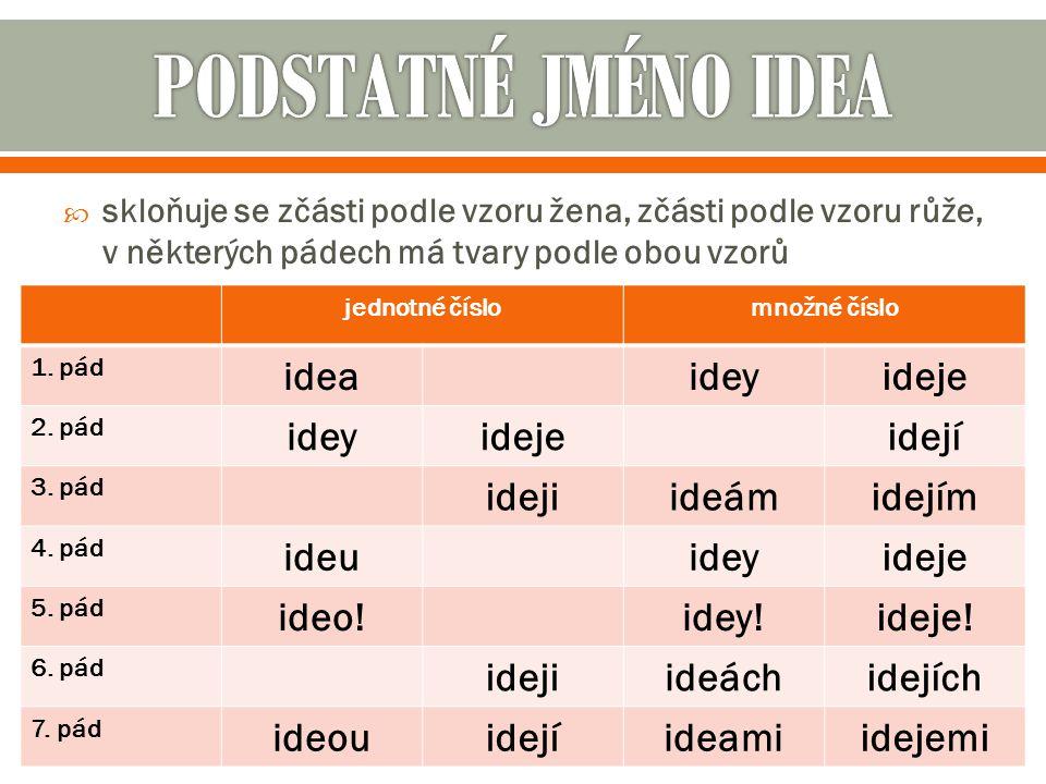 PODSTATNÉ JMÉNO IDEA idea idey ideje idejí ideji ideám idejím ideu