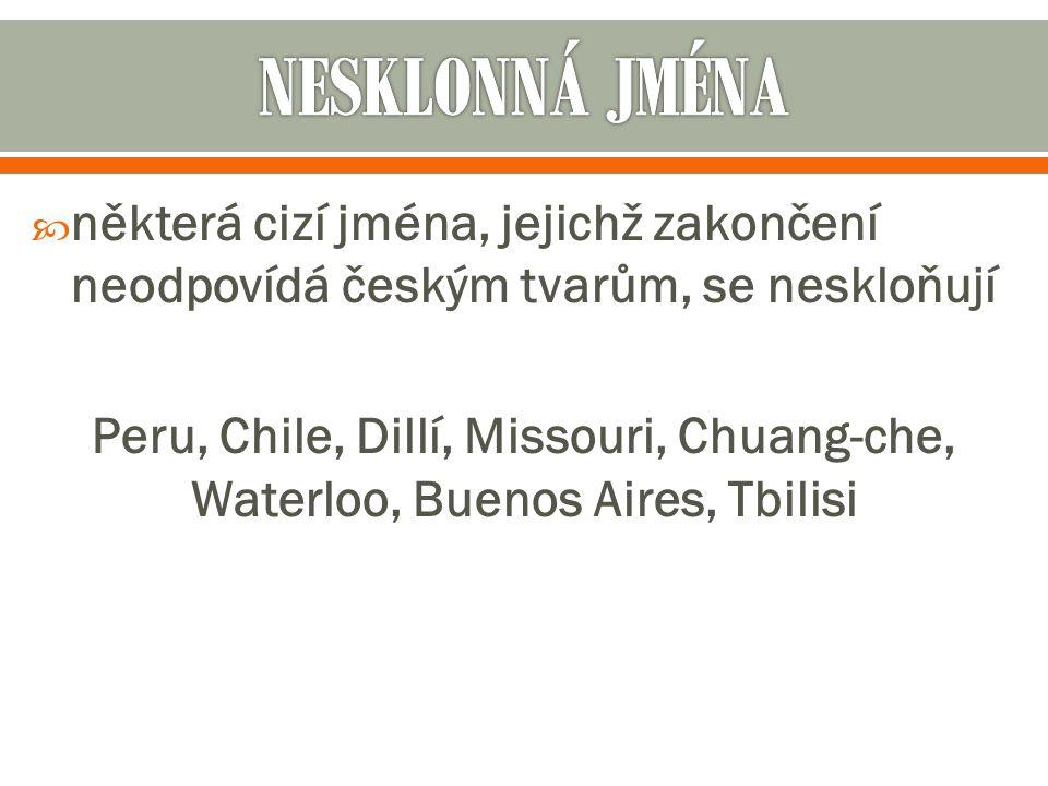 NESKLONNÁ JMÉNA některá cizí jména, jejichž zakončení neodpovídá českým tvarům, se neskloňují.