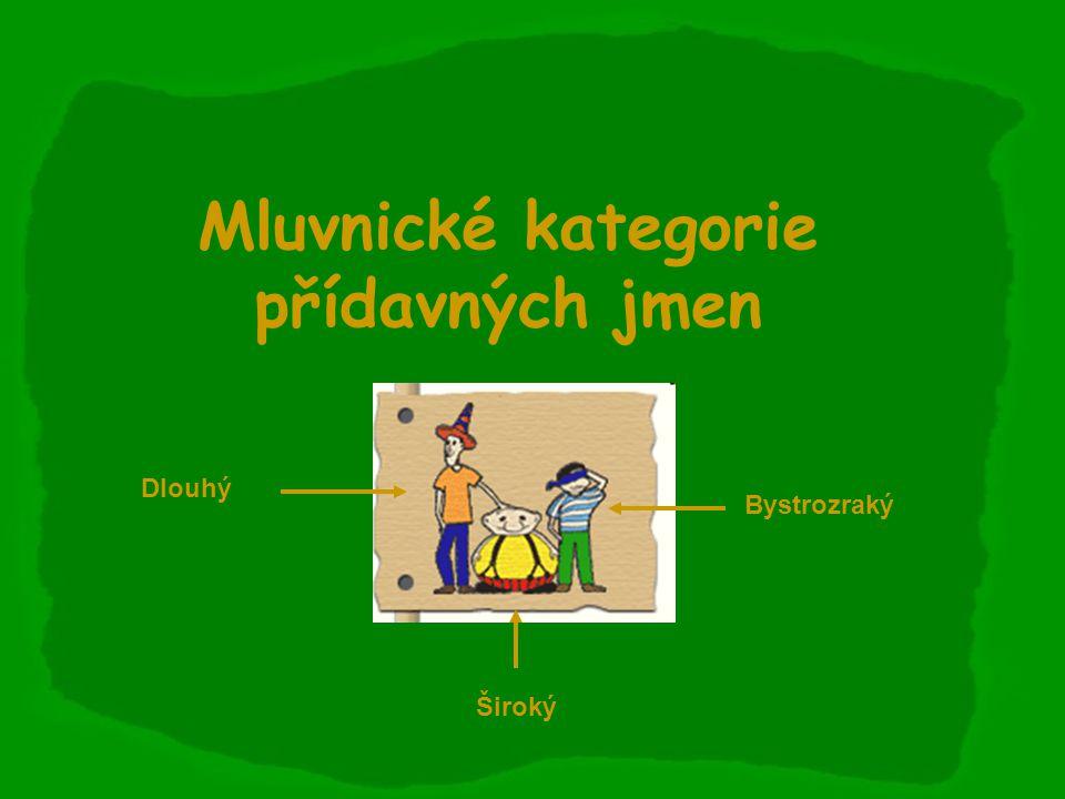 Mluvnické kategorie přídavných jmen