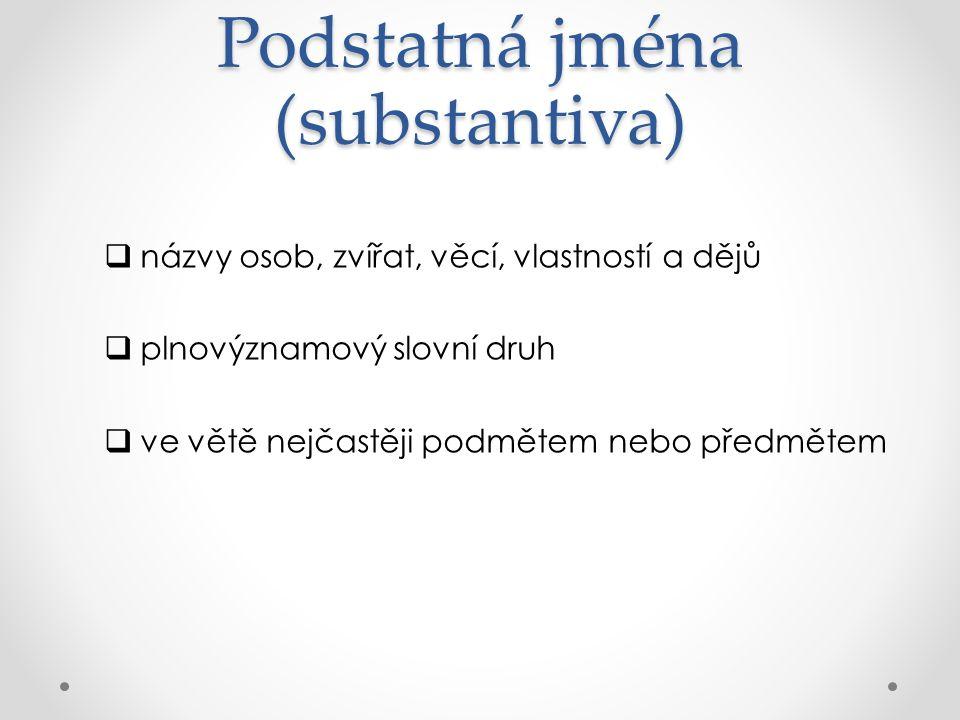 Podstatná jména (substantiva)