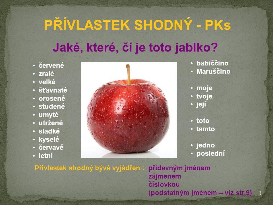 PŘÍVLASTEK SHODNÝ - PKs Jaké, které, čí je toto jablko