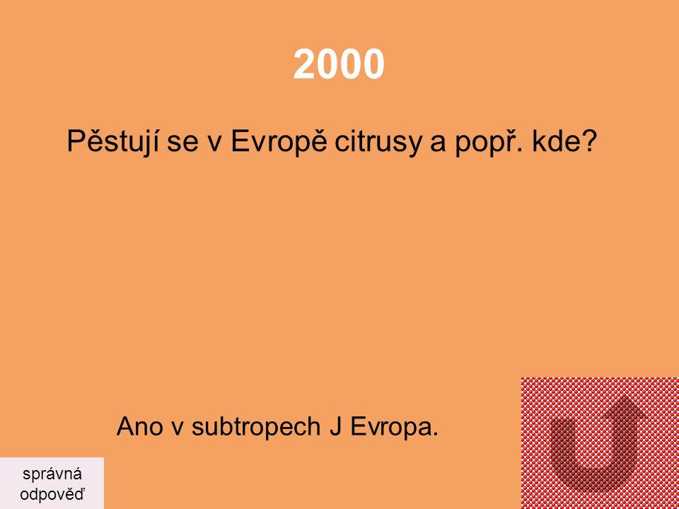 2000 Pěstují se v Evropě citrusy a popř. kde