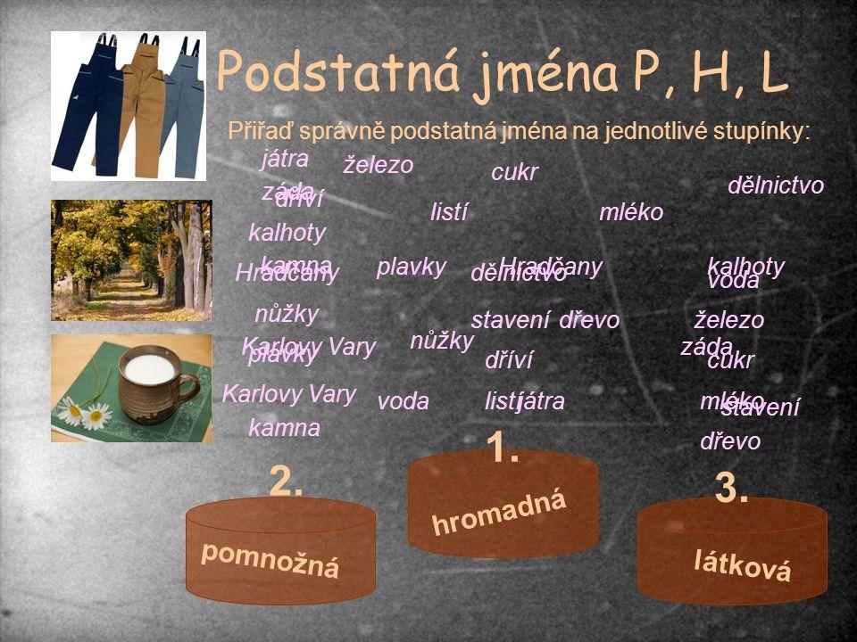 Podstatná jména P, H, L 1. 2. 3. hromadná pomnožná látková