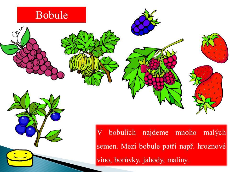 Bobule V bobulích najdeme mnoho malých semen. Mezi bobule patří např.