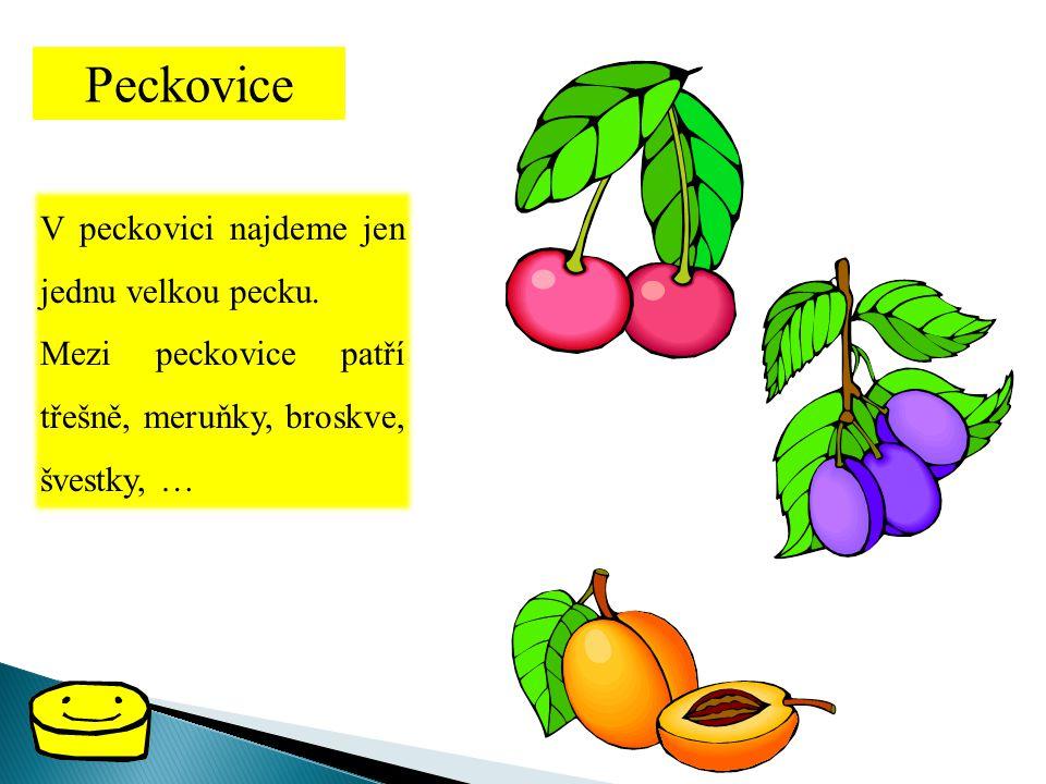 Peckovice V peckovici najdeme jen jednu velkou pecku.