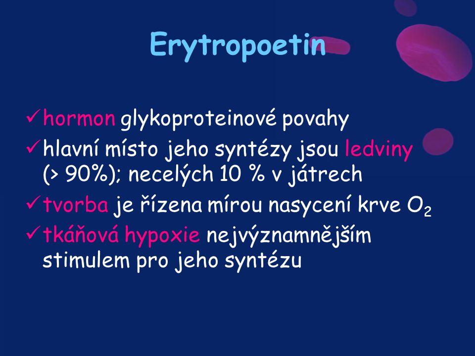 Erytropoetin hormon glykoproteinové povahy