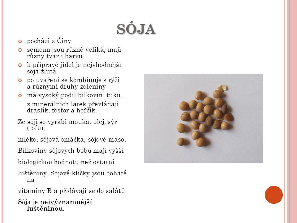 sója pochází z Číny semena jsou různě veliká, mají různý tvar i barvu