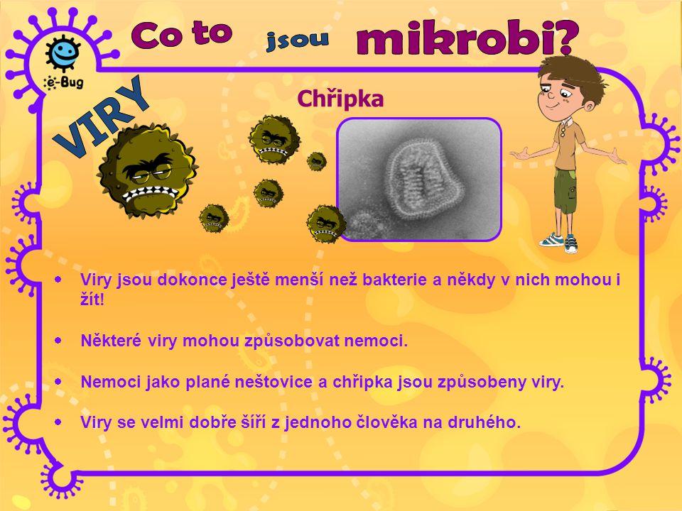 Chřipka Co to mikrobi jsou VIRY