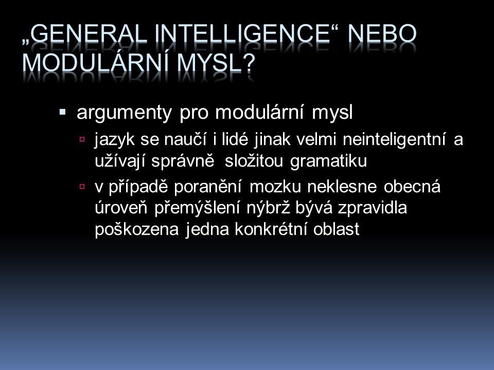 """""""General intelligence nebo modulární mysl"""