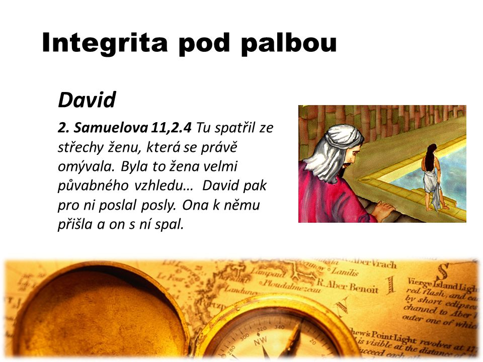 Integrita pod palbou David