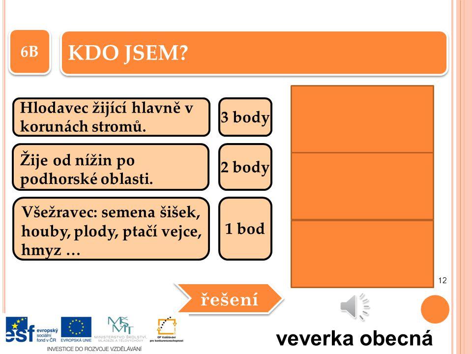 KDO JSEM veverka obecná řešení 6B Hlodavec žijící hlavně v 3 body