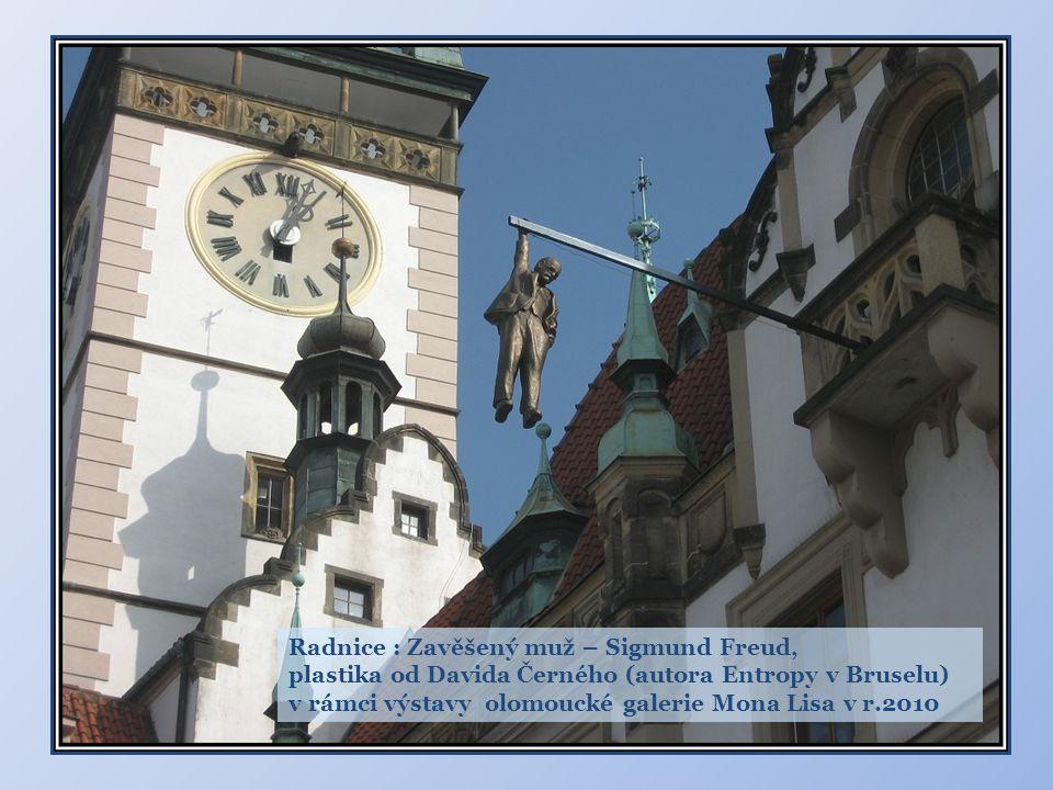 Radnice : Zavěšený muž – Sigmund Freud,