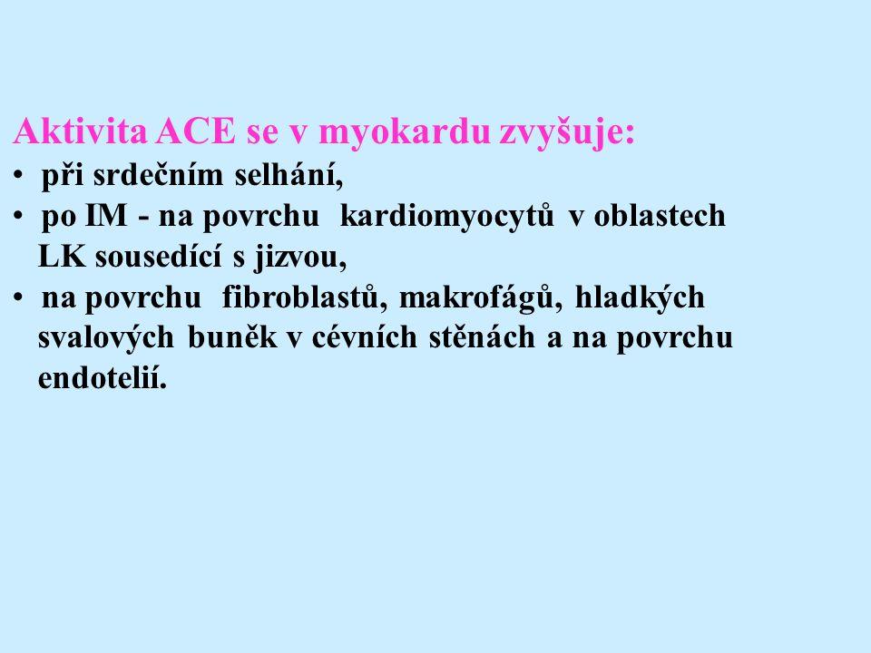 Aktivita ACE se v myokardu zvyšuje: