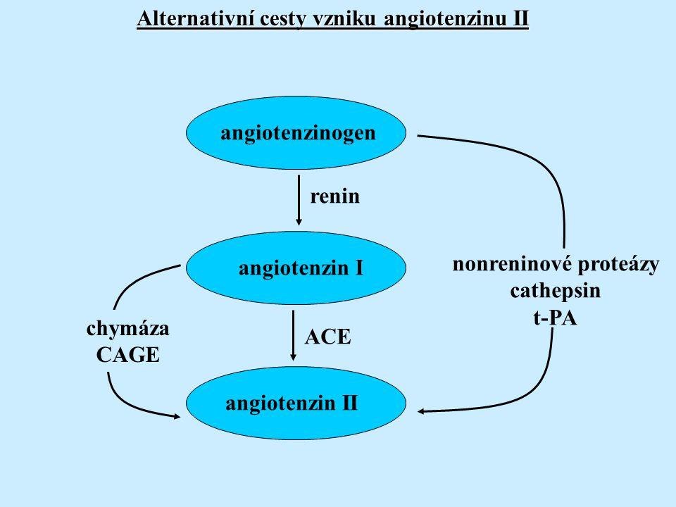 Alternativní cesty vzniku angiotenzinu II