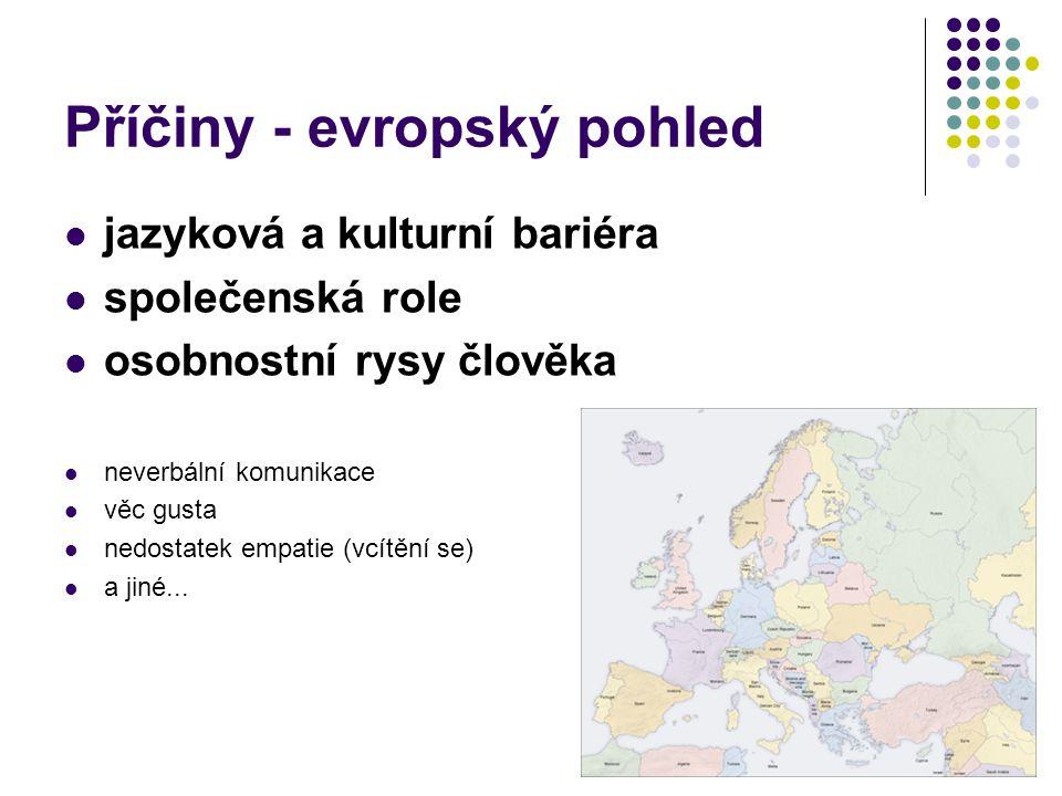 Příčiny - evropský pohled