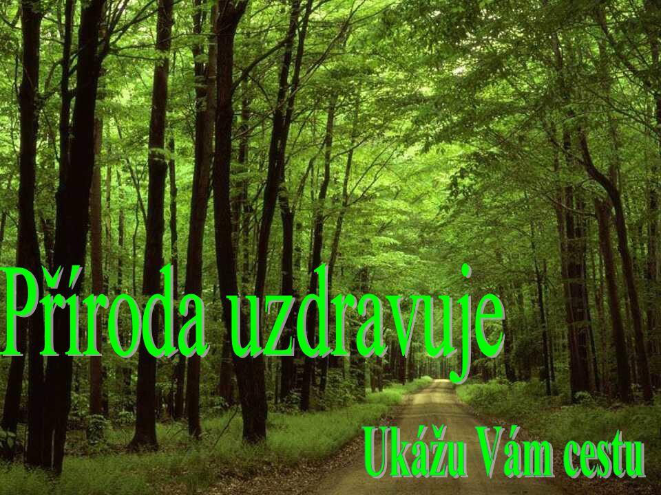 Příroda uzdravuje Příroda uzdravuje Anna Kabotová Ukážu Vám cestu