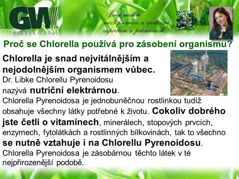 Proč se Chlorella používá pro zásobení organismu
