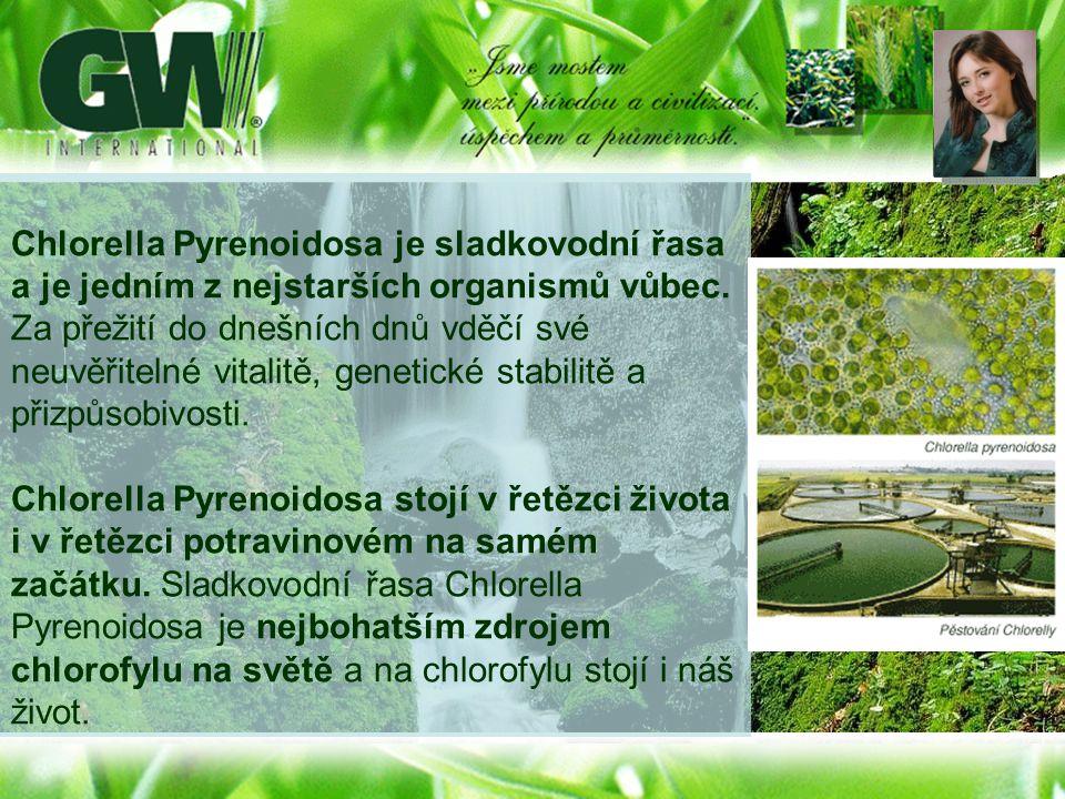 Chlorella Pyrenoidosa je sladkovodní řasa a je jedním z nejstarších organismů vůbec. Za přežití do dnešních dnů vděčí své neuvěřitelné vitalitě, genetické stabilitě a přizpůsobivosti.