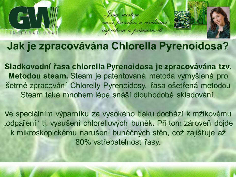 Jak je zpracovávána Chlorella Pyrenoidosa