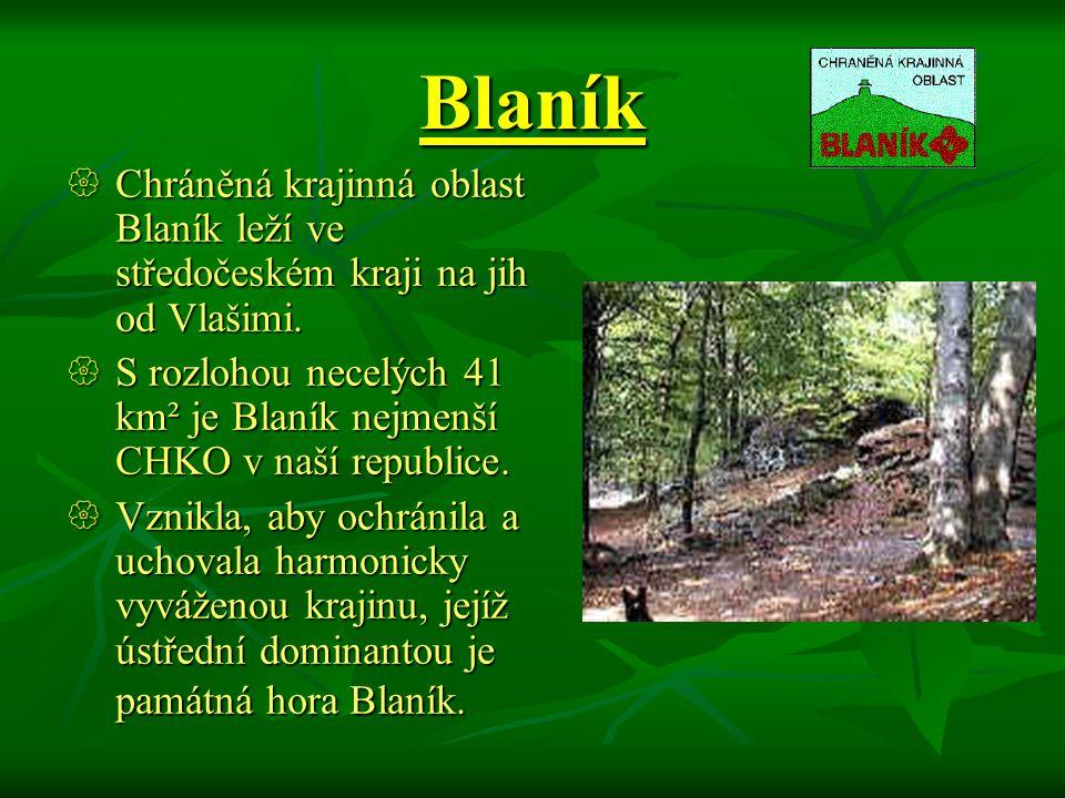 Blaník Chráněná krajinná oblast Blaník leží ve středočeském kraji na jih od Vlašimi.