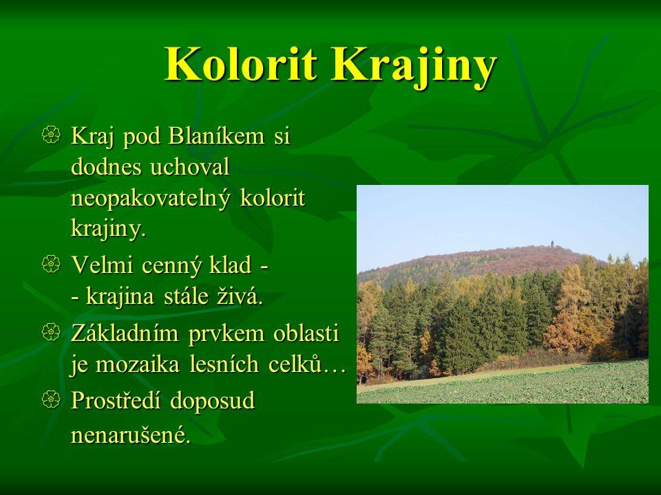 Kolorit Krajiny Kraj pod Blaníkem si dodnes uchoval neopakovatelný kolorit krajiny. Velmi cenný klad - - krajina stále živá.