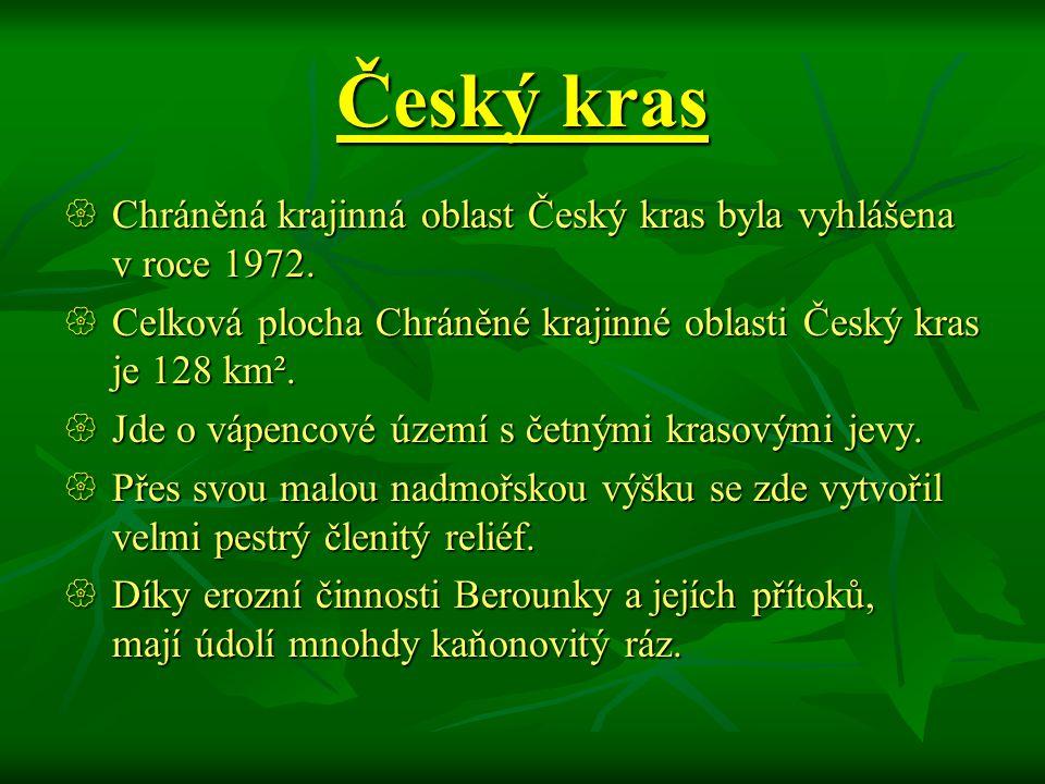 Český kras Chráněná krajinná oblast Český kras byla vyhlášena v roce 1972. Celková plocha Chráněné krajinné oblasti Český kras je 128 km².