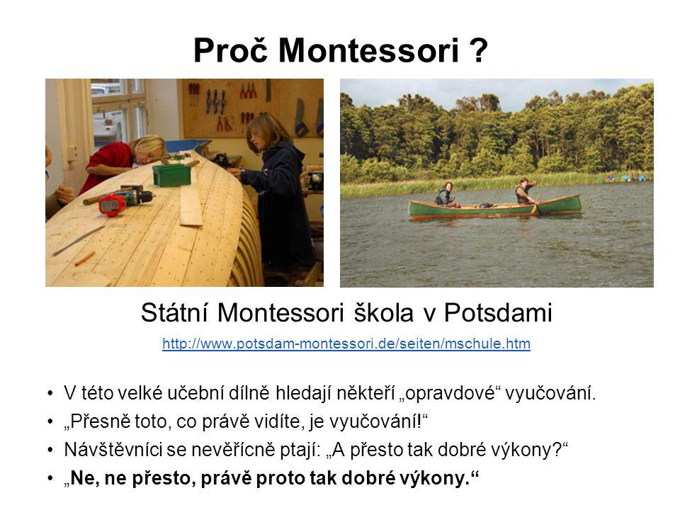 Státní Montessori škola v Potsdami