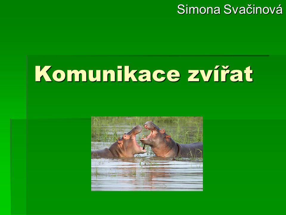 Simona Svačinová Komunikace zvířat