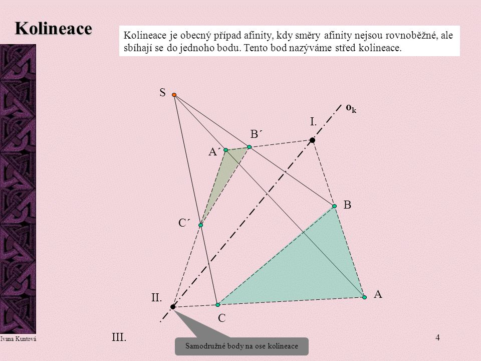 Samodružné body na ose kolineace