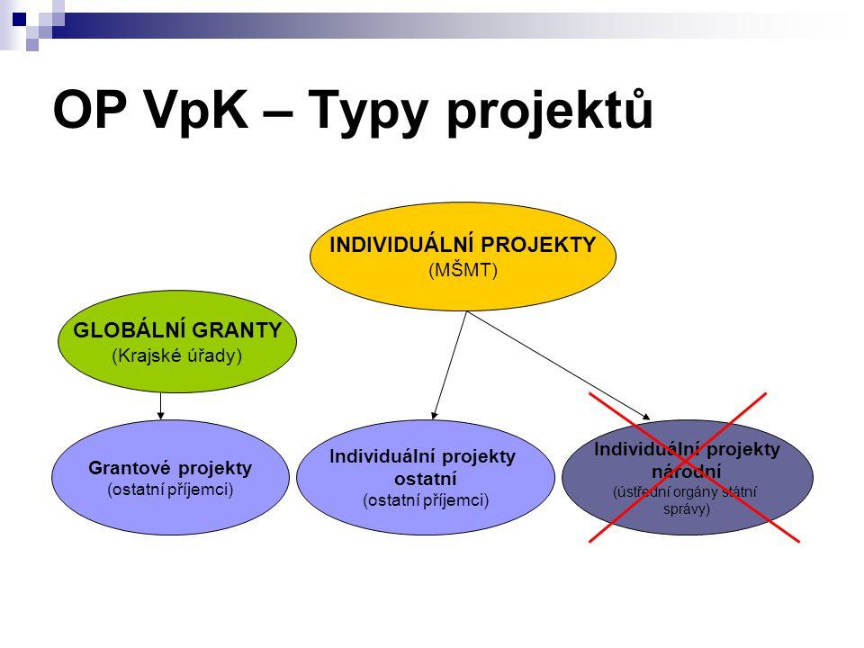 INDIVIDUÁLNÍ PROJEKTY Individuální projekty Individuální projekty