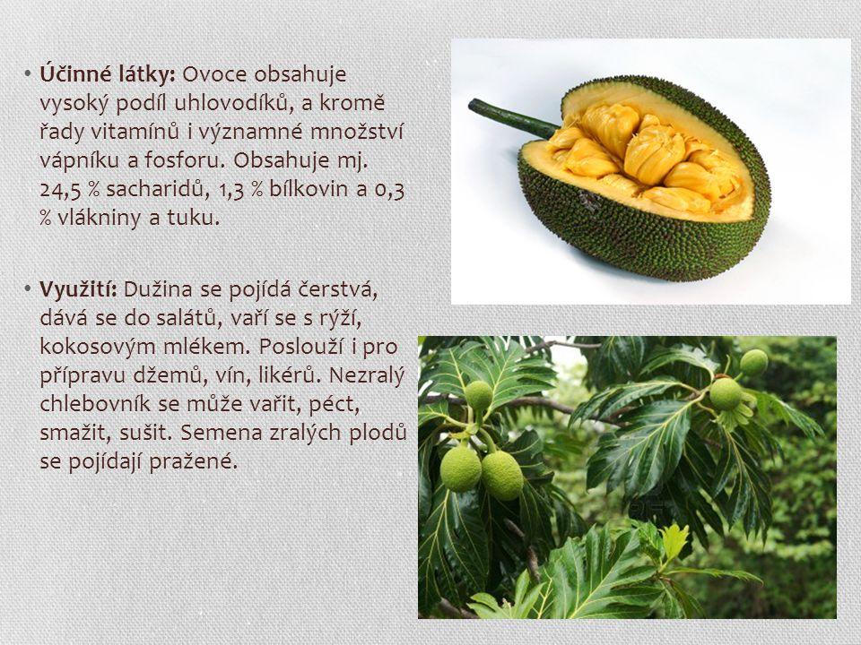 Účinné látky: Ovoce obsahuje vysoký podíl uhlovodíků, a kromě řady vitamínů i významné množství vápníku a fosforu. Obsahuje mj. 24,5 % sacharidů, 1,3 % bílkovin a 0,3 % vlákniny a tuku.