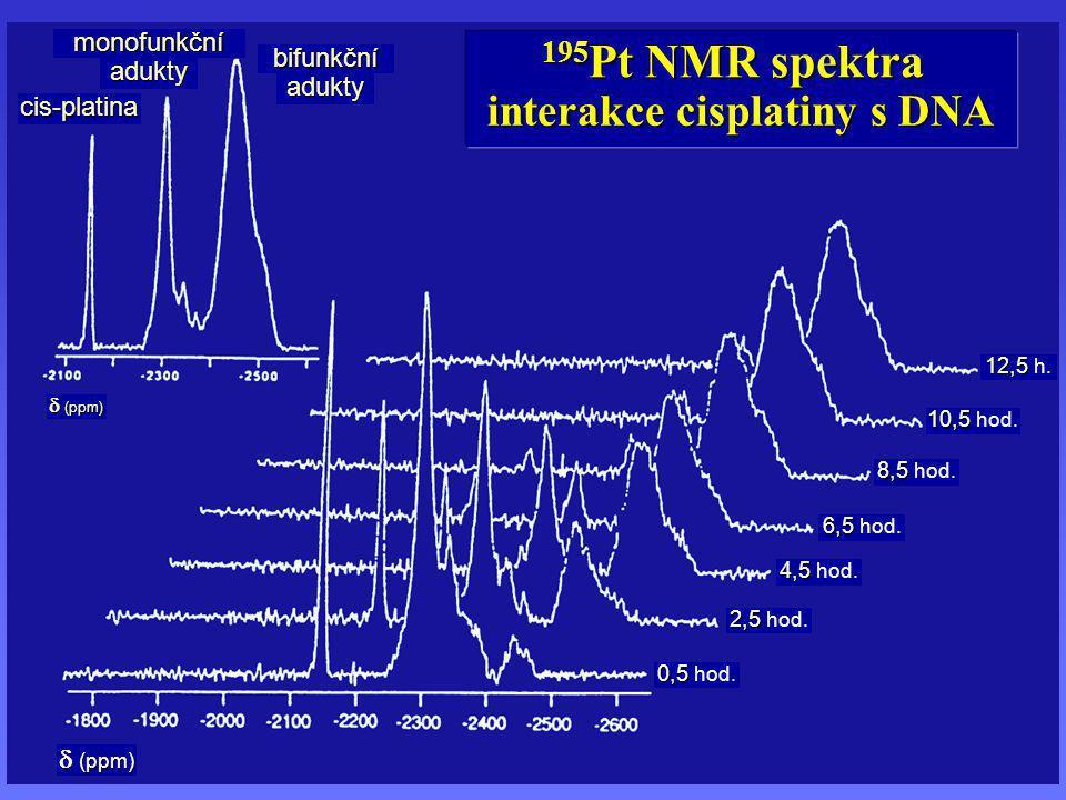 interakce cisplatiny s DNA