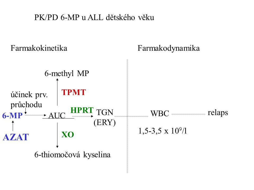 AZAT PK/PD 6-MP u ALL dětského věku Farmakokinetika Farmakodynamika
