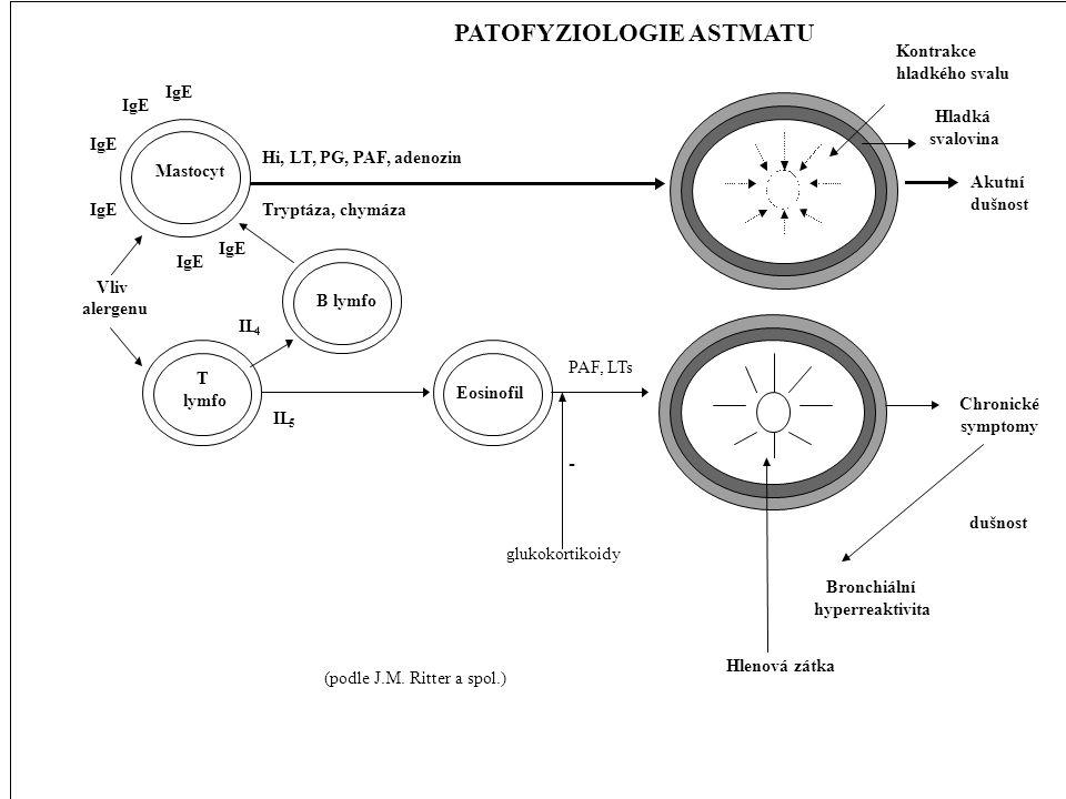 PATOFYZIOLOGIE ASTMATU
