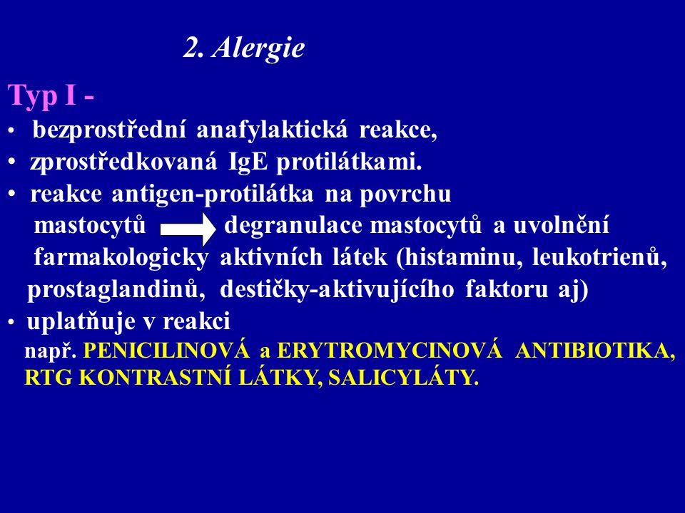 2. Alergie Typ I - zprostředkovaná IgE protilátkami.