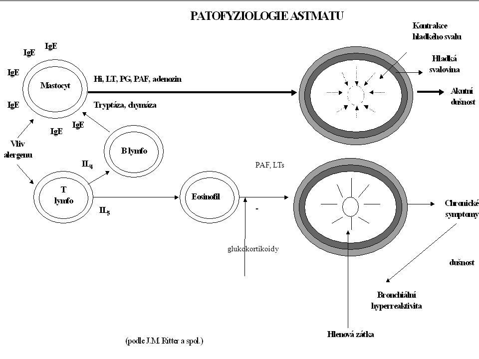 PAF, LTs - glukokortikoidy